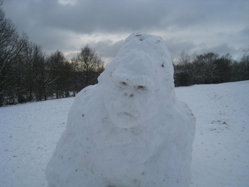 snow-gorilla